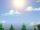 Sunspot's Sunspot