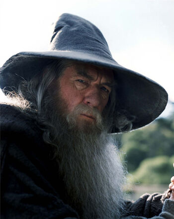 Gandalf the Grey.jpg