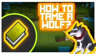 Wolf_Taming