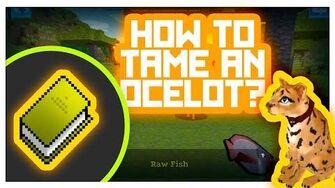 Ocelot_Taming