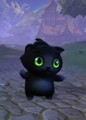 Chicken Lucy-Purr.png