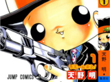 List of Katekyo Hitman Reborn! chapters and volumes