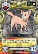 101-01C Rui