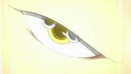 Kangaryuu Eye