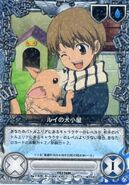119-01R Rui