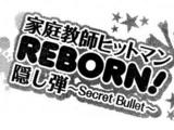 Katekyō Hitman Reborn! Secret Bullet
