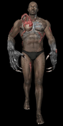 Akin-Tyrant-Form