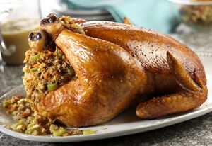 Roasted-chicken-with-stuffing-gravy-large-24499.jpg