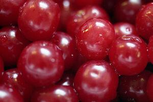 Sour Cherries close up.jpg