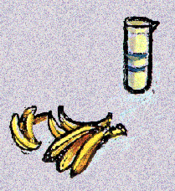 Vera's banana milkshake.png
