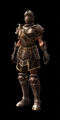 Thyrdon armor set