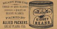 CannedKidneyBeans CT