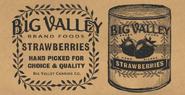 StrawberriesCanCT