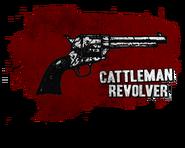 Rdr Revolver Descr