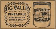 PineapplesCatalogRDR2