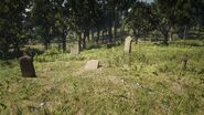 Friedhof von Mossy Flats