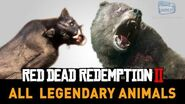 Red Dead Redemption 2 All Legendary Animals