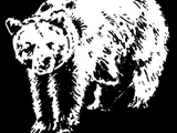Grizzlyfell