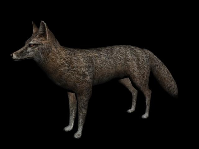 Fuchs (RDR)