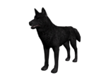 Lobo3D.png