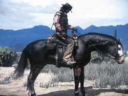 Dunkles Pferd