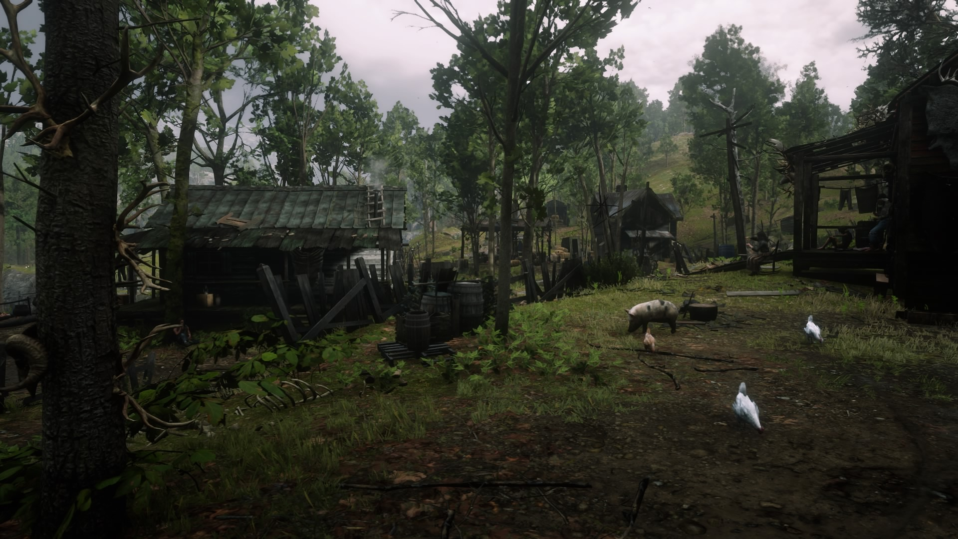 Butcher Creek