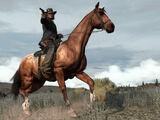 Pferde in Redemption