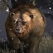 367px-Rdr brumas bear