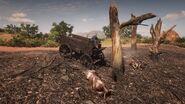 Verbrannter Wagen