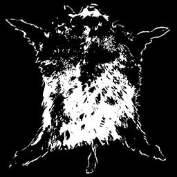 Wildschweinhaut