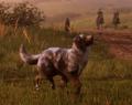 HundScreenshotRDRII