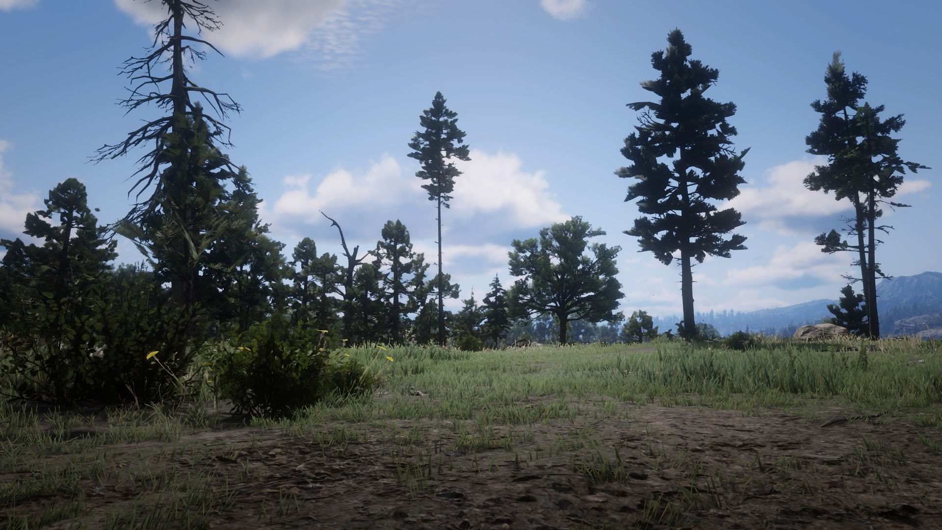 Horseshoe Overlook