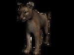 Puma3D.png