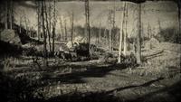 Black Bone Forest loading screen