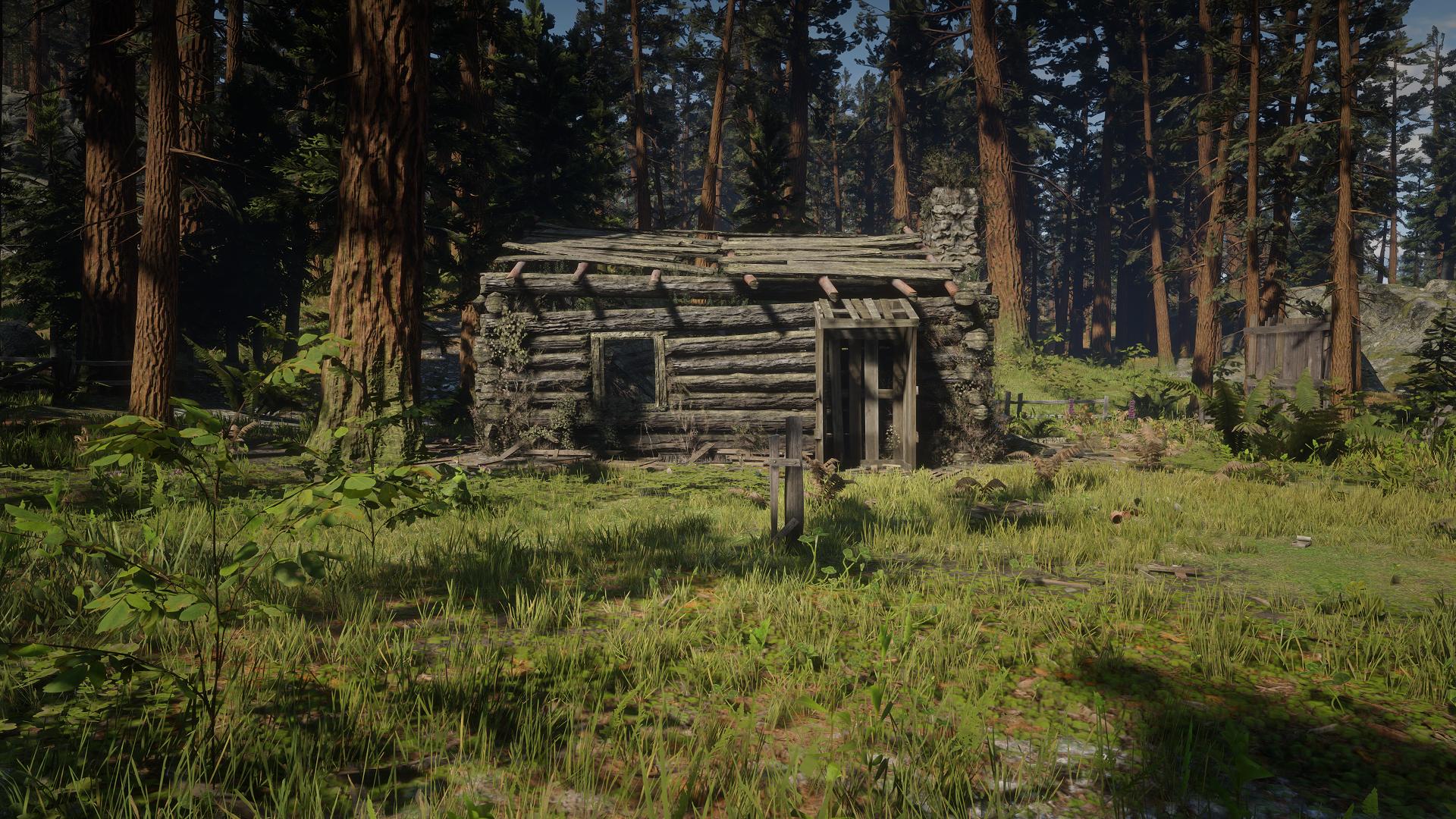 Bearclaw Camp
