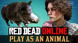 Red Dead Online - Play as a Boar Harrietum Officinalis