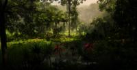 Jungles in Guarma 9