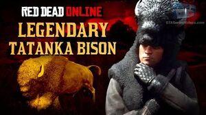 Red_Dead_Online_-_Legendary_Tatanka_Bison_Location_Animal_Field_Guide