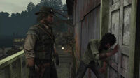 Rdr on shaky's ground19
