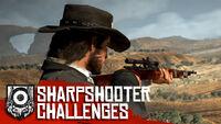Rdr sharpshooter challenge.jpg