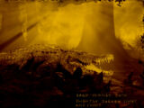 Legendary Sun Gator