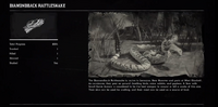 SnakeDiamondbackProfileRDR2