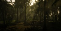Jungles in Guarma 10