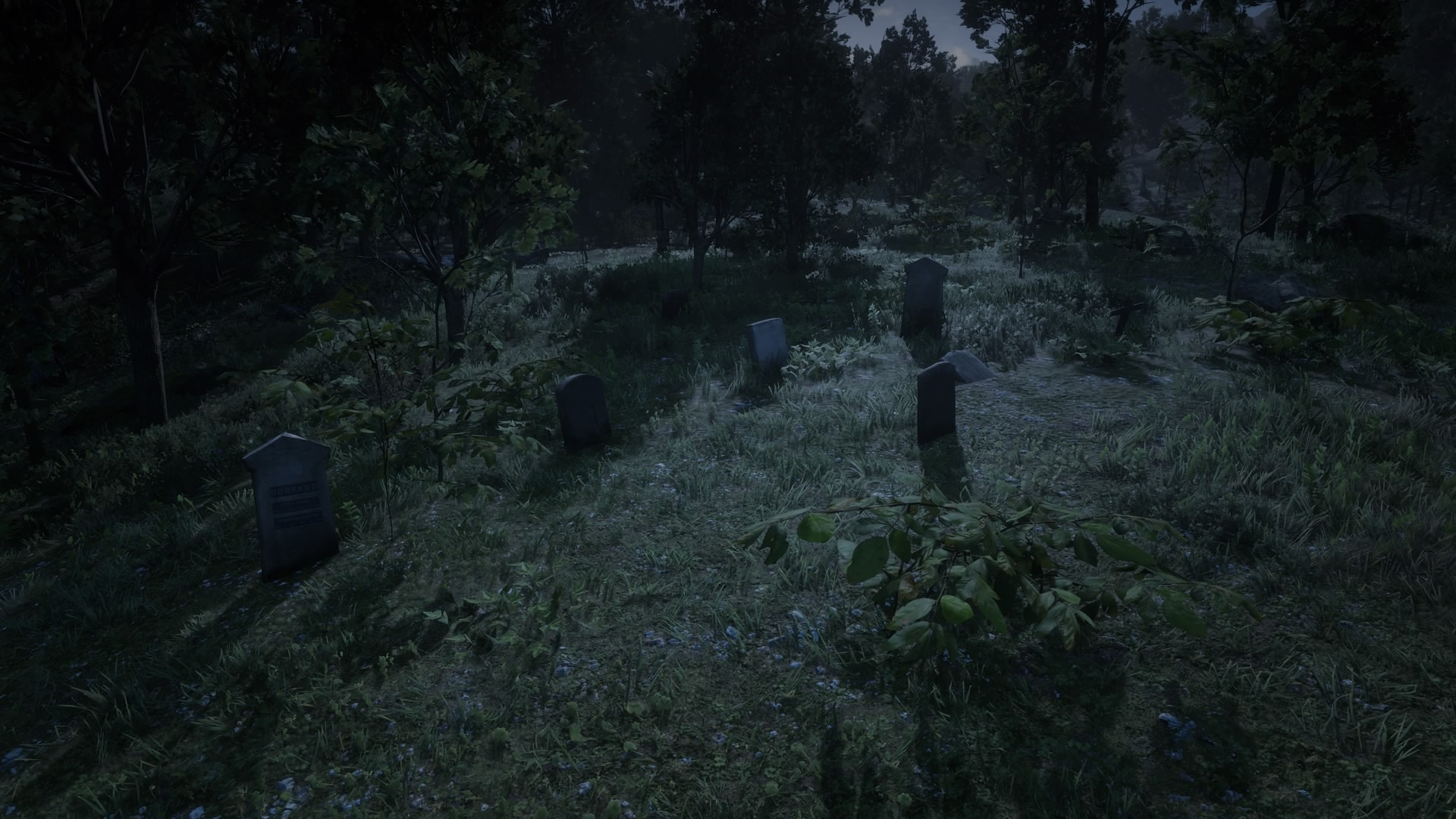 Mossy Flats Graveyard