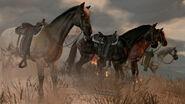 Rdr four horses oblique
