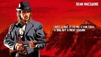 Sean MacGuire - Red Dead Redemption 2