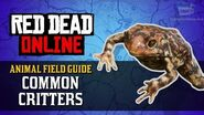 Red Dead Online - Common Critters Animal Locations Guide Naturalist Role