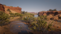 San Luis River location from the deers and the buck loading screen