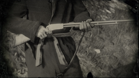 Varmint-rifle Profile
