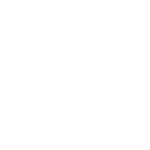 Upper Tooth Fossil.png